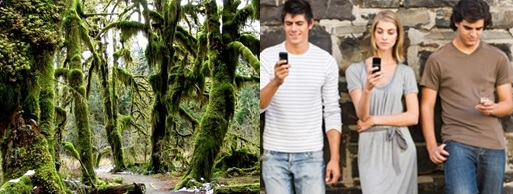 Left: The Hoh Rainforest Right: A stock picture of millenials